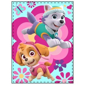Fleecová deka Paw Patrol - Skye a Everest