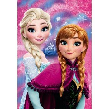 Fleecová deka Ľadové kráľovstvo - Frozen