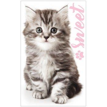 Uterák na ruky / na tvár Sladké mačiatko