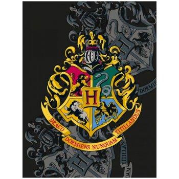 Fleecová deka Harry Potter s erbom školy čarodejníckej v...