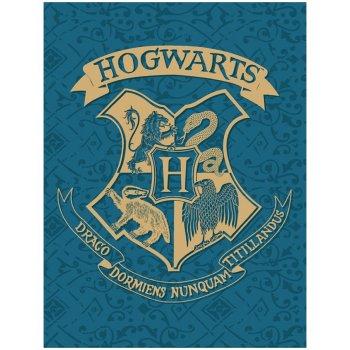 Fleecová deka Harry Potter - tyrkysová